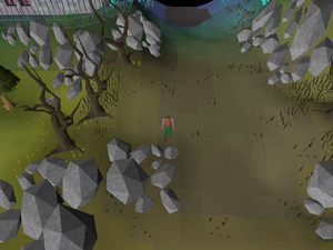 Hot cold clue - Arceuus house entrance
