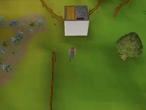 Hot cold clue - east of Taverley herb shop