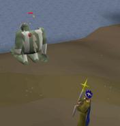 Sea Troll General dies