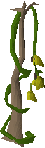 File:Vanilla plant.png