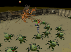 Fighting Kalphite Queen
