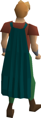 File:Fremennik teal cloak equipped.png