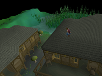 Canifis Agility Course 7