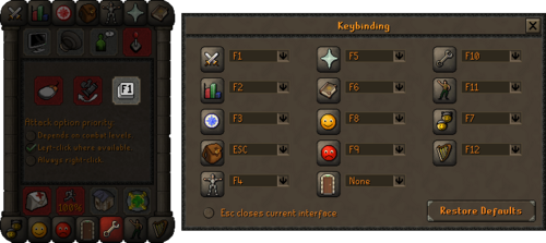 Custom F-Keys & Music Cape (3)