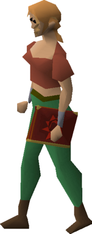 File:Mage's book equipped.png