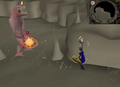 Dagannoth mother safespot.png