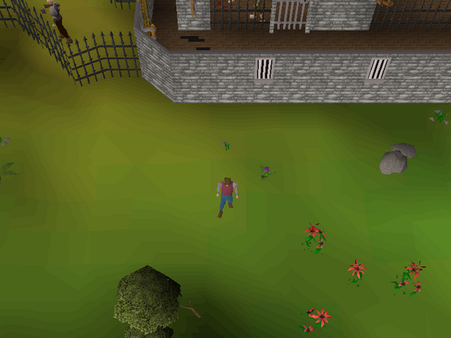 File:Hot cold clue - northwest of NMZ.png