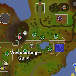 Guildmaster Lars location