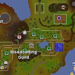 Guildmaster Lars location