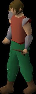 Bronze defender equipped