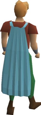 File:Fremennik cyan cloak equipped.png