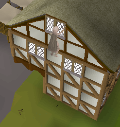 File:Rooftop Agility Courses (7).png