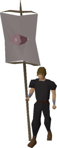 File:Banner (HAM) equipped.png