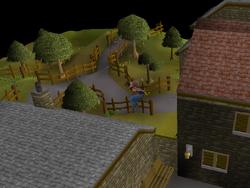 Draynor Village Agility Course 6