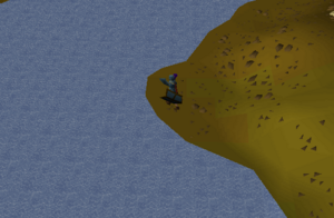 Tower of life osrs