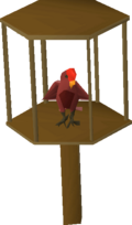 Parrot (red)