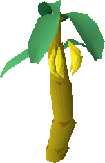 File:Banana tree.png
