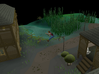 Canifis Agility Course 6