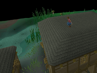 Canifis Agility Course 5
