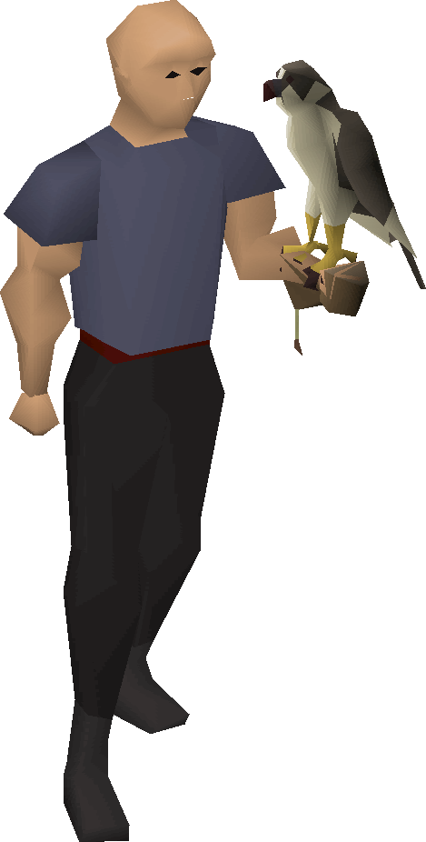 Falconer's glove with falcon equipped