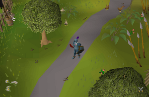 how to get to hemenster in runescape