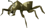 Cave bug