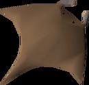 Manta ray detail