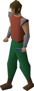 Rune defender equipped