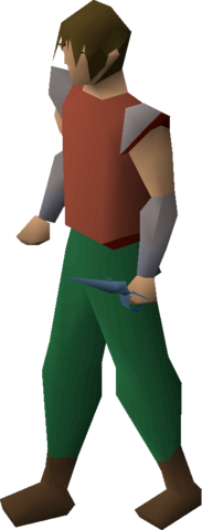File:Rune defender equipped.png