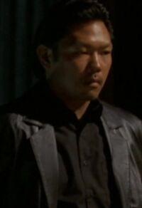 4x23 Mao