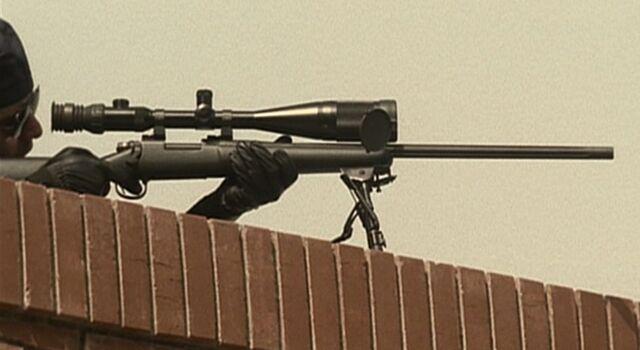 File:3x20 Remington.jpg