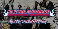 Bleach Abridged: Meet The Gotei 13
