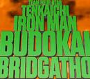 Tenkaichi Ironman Budokai Abridgathon (TIBA)