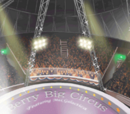 Berry Big Circus