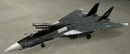 F-14D Special color hangar