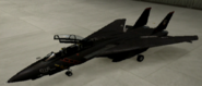 F-14D Soldier color hangar
