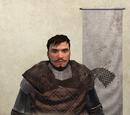 King Robb Stark
