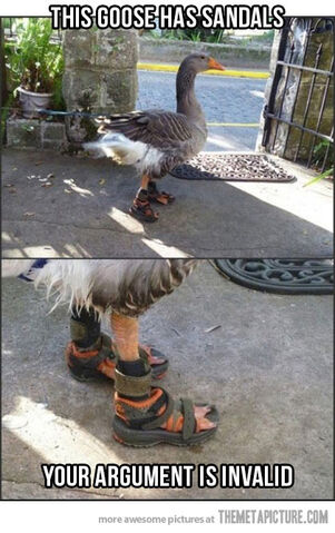 File:Funny-swan-sandals-foot.jpg