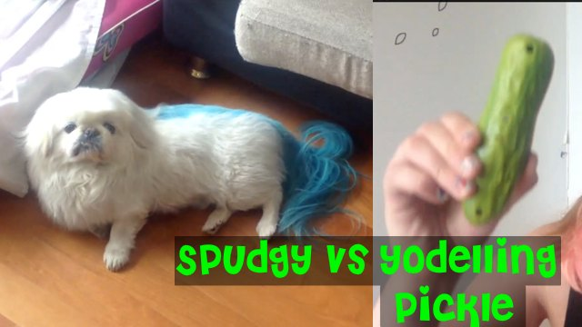 File:Spudgy-vs-Yodeling-Pickle.jpg