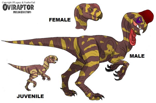 File:Oviraptor.png