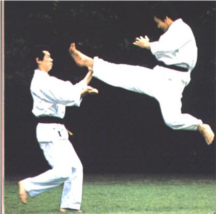 File:Karate05-15-15.jpg