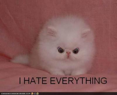 File:400px-Funny-pictures-i-hate-everything1.jpeg