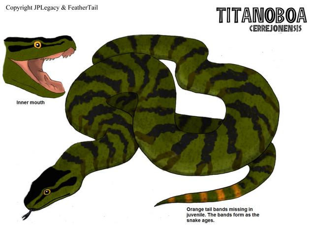 File:Titanoboa.png