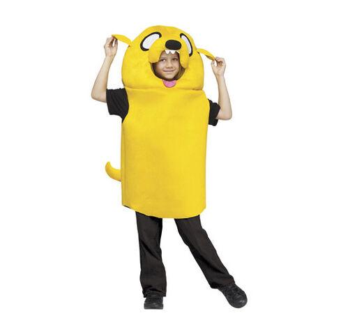 File:Jake Costume.jpg