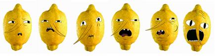 Majestic lemon