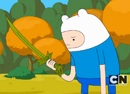 Finn not happy with Grass Sword