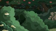 S07e7 bushes