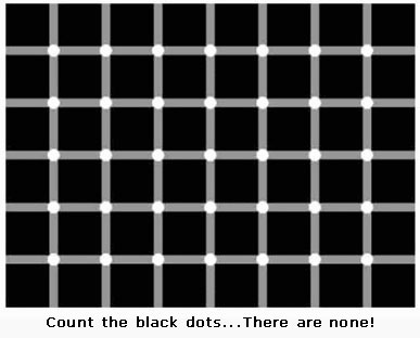 File:No Black Dots Lol!!!O o.jpg