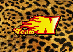 NMB48 Flag TeamN