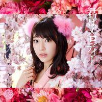 AKB48 - Kimi wa Melody Type-C Lim